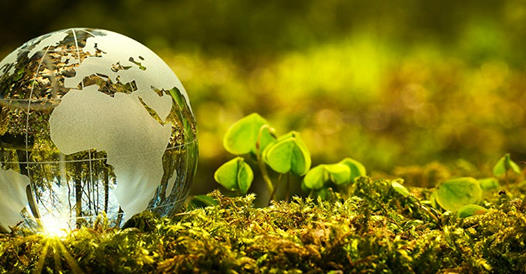 ΔΩΡΕΑΝ Σεμινάριο Περιβαλλοντικής Διαχείρισης!